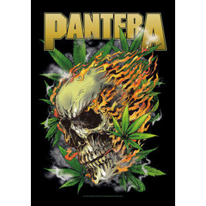 HEART ROCK Pantera Skull Leaf